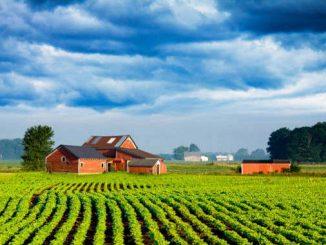 Prestiti acquisto terreni agricoli